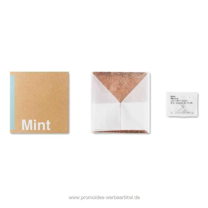 "Mint Pflanz-Set ""Minze"""